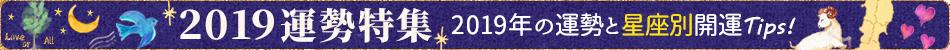 12/20 2019年運勢特集!2019年の運勢と星座別開運Tips